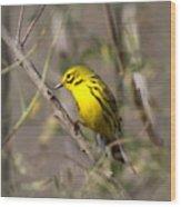 0839 -yellow Warbler Wood Print