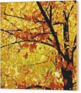 09032015034 Wood Print