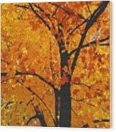09032015035 Wood Print