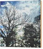 09032015039 Wood Print
