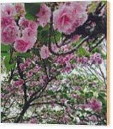 09032015056 Wood Print