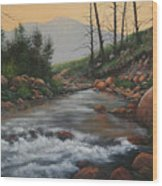 090430-1216   Trout Creek - Spring Wood Print