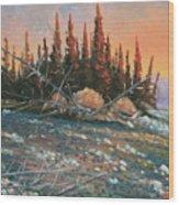 090902-68  All Aglow Wood Print