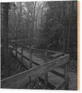 091809-7 Wood Print