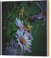 092009-186 Wood Print