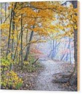 0982 Starved Rock Riverwalk Wood Print