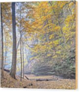 0983 Starved Rock Colors Wood Print