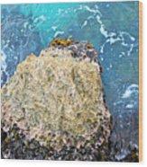 Sea Rocks Wood Print