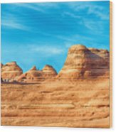 Famous Delicate Arch In Arches National Park Wood Print