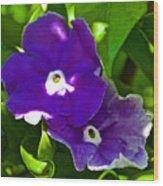Purple Flowers In Pilgrim Place In Claremont-california Wood Print