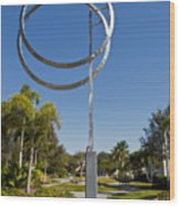 The Vero Beach Museum Of Art In East Central Florida Wood Print