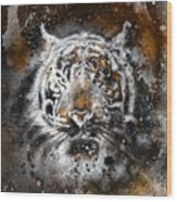 Tiger Collage On Color Abstract  Background  Rust Structure Wildlife Animals Wood Print