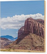 Views Of Canyonlands National Park Wood Print