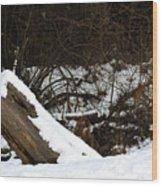 0009 Wood Print