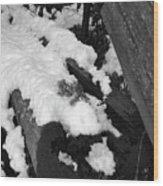 Snowy Wood  Wood Print