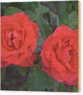 0054 Wood Print