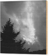 072306-31bw Wood Print