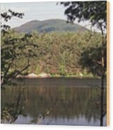 080706-84 Wood Print