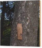 09-05-16 Wood Print