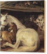 10234 Edwin Henry Landseer Wood Print
