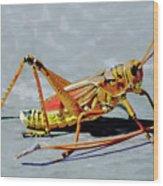15- Lubber Grasshopper Wood Print
