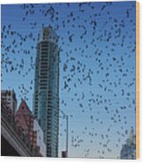 1.5 Million Mexican Free-tail Bats Overtake The Austin Skyline As They Exit The Congress Avenue Bridge Wood Print