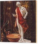 16488 Nicanor Pinole Wood Print