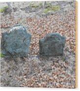 1-20-18--7466 Don't Drop The Crystal Ball Wood Print