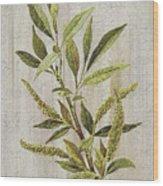 3d Wild Flower Painting Wood Print