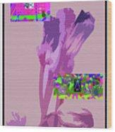 5-21-2015babcd Wood Print