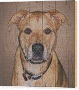 8870035 Wood Print