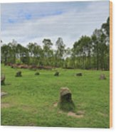 9 Ladies Stone Circle, Stanton Moor, Peak District National Park Wood Print