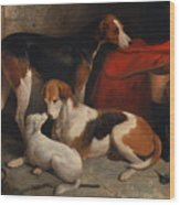 A Couple Of Foxhounds With A Terrier - The Property Of Lord Henry Bentinck  Wood Print