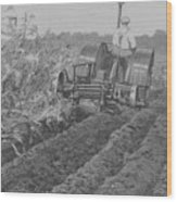 A Farmer Driving A Tractor Wood Print