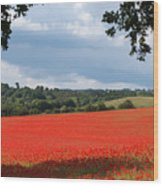 A Field Of Red Poppies Wood Print