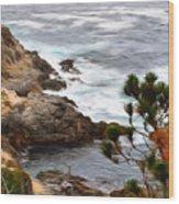 A Grey Day At Big Sur 2 Wood Print