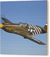 A P-51a Mustang In Flight Wood Print