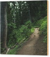 A Path In Paradise Wood Print