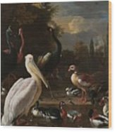 A Pelican And Other Birds Near A Pool, Known As The Floating Feather, Melchior D Hondecoeter, Wood Print