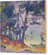 A Pine Grove Wood Print by Henri-Edmond Cross