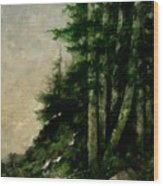 A Quiet Place Wood Print