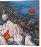 A Touch Of Fall Wood Print by Tanja Ware