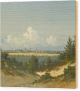 A View Of Tallinn From Nomme Wood Print