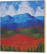 A View Of The Blue Mountains Of The Adirondacks Wood Print