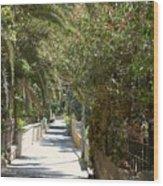 A Walk In Rehavia Wood Print