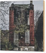 Abandoned House In Old North Saint Louis City Wood Print