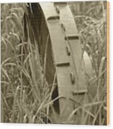 Abandoned Steel Farm Implement Wheel Wood Print
