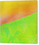 Abstract Colours Wood Print