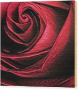 Abstract Rose Wood Print