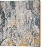 Abstract Texture Old Plaster Wood Print